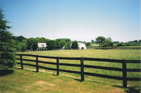 Paddocks and barns